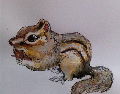 """Check out new work on my @Behance portfolio: """"Ilustración de ardilla. Con acuarelas y tira líenas"""" http://be.net/gallery/47003953/Ilustracion-de-ardilla-Con-acuarelas-y-tira-lienas"""