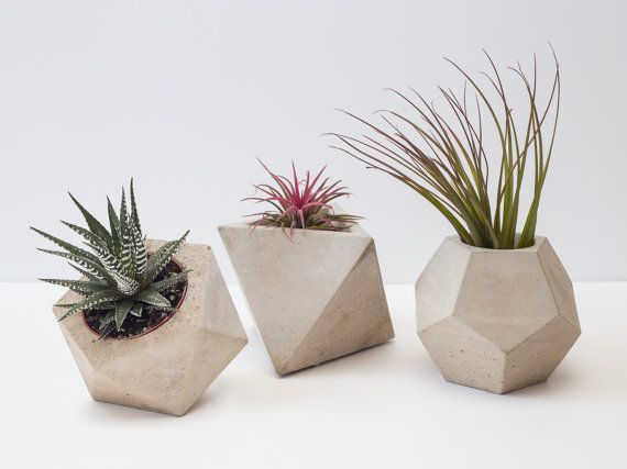 A trio of our larger planters: A large icosahedron planter measuring approx 14cm x 12cm, a dodecahedron planter measuring approx 13cm x 11cm and an