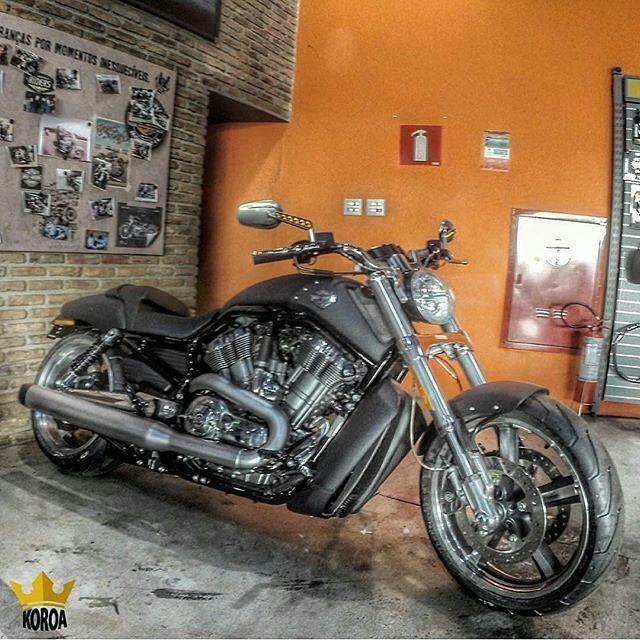 #Repost bhharleydavidson: Vrod Muscle!!! Inspirados nas corridas, esses garfos invertidos de 43mm ajudam a reduzir a massa não suspensa e aumentar a força e a rigidez do conjunto. Eles completam o amplo visual que flui por toda a motocicleta até sua parte traseira. Forte e esportiva, a parte frontal é um testemunho do estilo dominante de um moderno e potente muscle-car. #harleydavidson #bhharleydavidson #liveyourlegend #harleysdeminas #DarkCustom #bhhd #harleydavidsondobrasil 📷 @koroa.hd