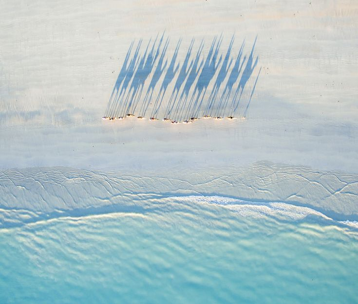 A bird's eye view of a caravan of camels walking along Cable Beach, Western Australia, at sunset.  © Todd Kennedy / National Geographic Travel Photographer of the Year Contest