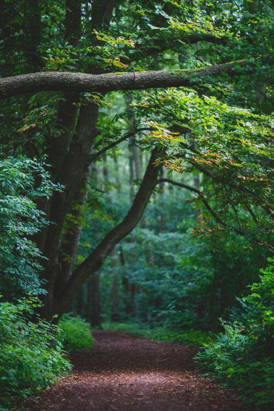 Se connecter à la nature, c'est ce que connecter …
