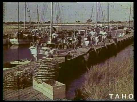 Tasmanian Adventure (c1964)