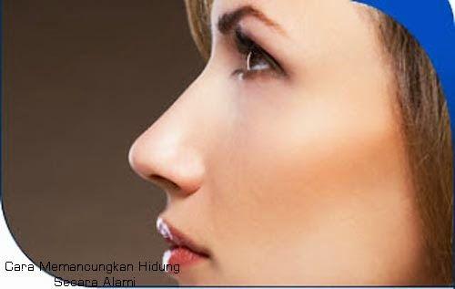 """Adakah dari anda yang memiliki masalah hidung yang kurang mancung alias pesek??? Jika iya  berarti hampir sama dengan saya """"Admin blog info kesehatan"""" nah sesama orang pesek harus saling berbagi dan sharing untuk memancungkan hidung.  # http://trik-tips-sehat.blogspot.com/2014/02/cara-memancungkan-hidung.html"""