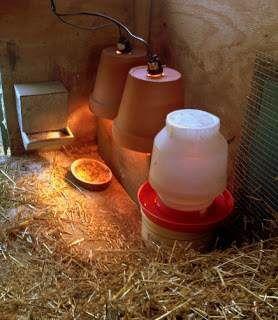 Heating chicken coop