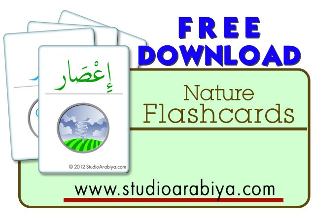 Studio Arabiya - Free Nature flashcards