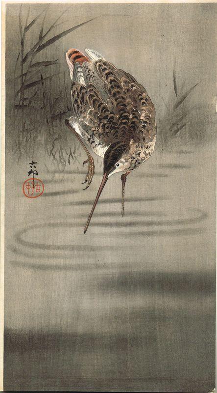 O HARA KOSON (1877–1945)  Frosch und Kaulquappen  Format: ô-tanzaku  Verlag: Daikokuya                             Siegel: Koson...