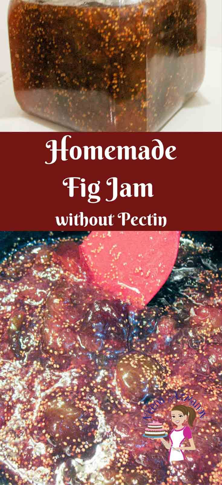 CLASSIC FIG JAM WITH LESS SUGAR - HOW TO FIG JAM This homemade fig jam recipe is soft, fruity, delicious and easy to spread. In this video I show you how to make this classic jam recipe without using any pectin or artificial flavorings just like our moms and grandmas use to do it. @Veenaazmanov #jam #fig #recipe #figjamrecipe #howtofigjam #jams #homemade #scratch #recipe