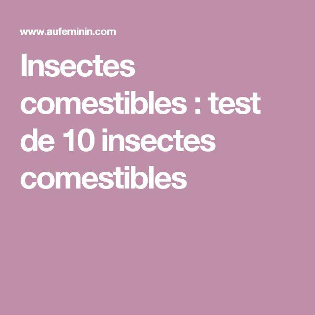 Insectes comestibles : test de 10 insectes comestibles