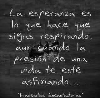 Some Quotes, Best Quotes, Quotes En Espanol, Spanish Quotes, Some Words, Deep Thoughts, Reflection, Poems, Wisdom