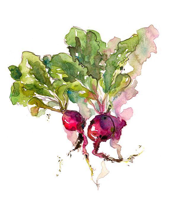 Kitchen Art, Spring Gardening radish watercolor- 8x10 print from an original watercolor sketch
