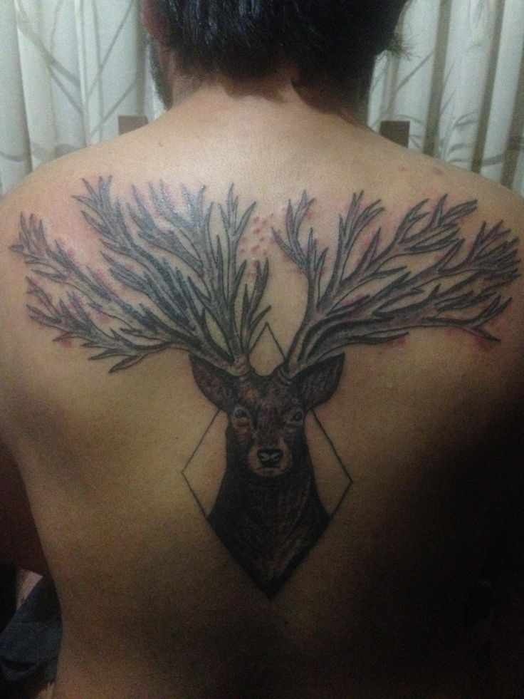 #deer #back #tattoo #tatuaje #blackink