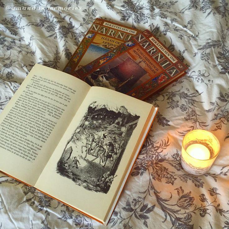 Bild från mitt instagram-konto: @amandas_memories En av mina tidigaste och starkaste läsupplevelser är berättelsen om Narnia, av C.S. Lewis. Tanken på en annanvärld, där oändliga äventyr och upptä…