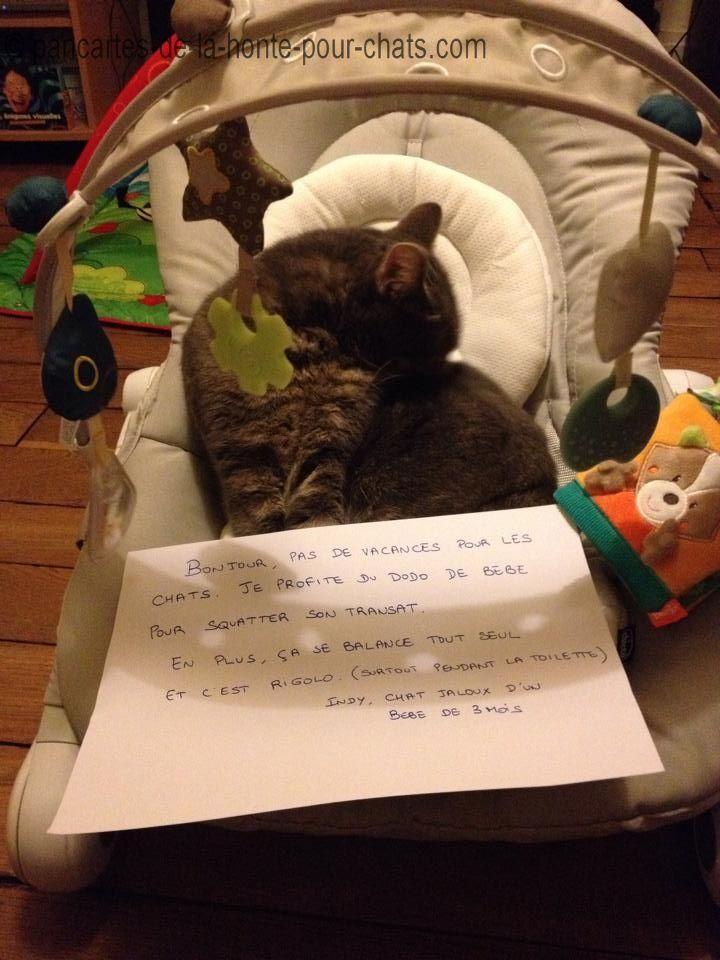 Et voilà, avec toutes ces pancartes il aura fait tout le tour des affaires de bébé :)