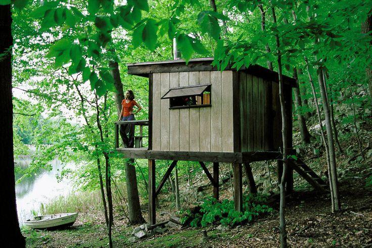 Little cabin | House on stilts, Tiny house cabin, Backyard ...