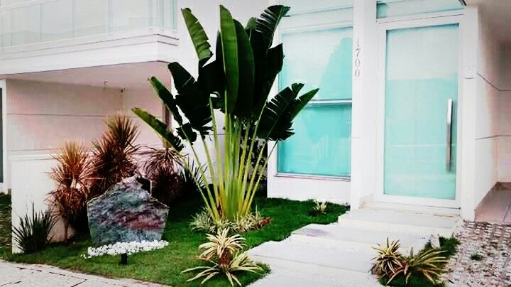 Frente residencial com Ravenala e Rocha fuxita da Natura Stone, Paisagistas: Franklin Maia e Georlando Pinheiro