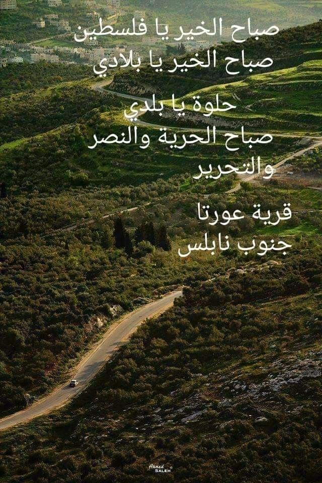 Pin By فلسطينية ولي الفخر On فلسطين يا أمي Lockscreen Screenshot Lockscreen Screenshots