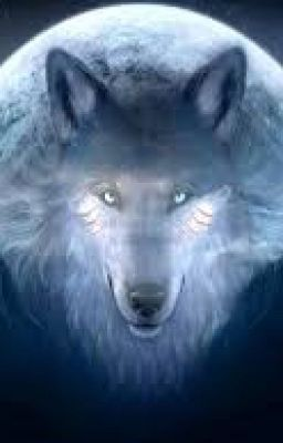 #wattpad #general-fiction This is the story of a wolf pup named Wolf Chaser, through a new alpha's eyes. Parts are based on different books and fandoms, so comment on any easter eggs!