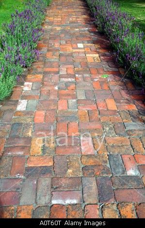 Brick path with different colors and crosshatch or basketweave pattern. Different colors and design make for an interesting walkway. Love used bricks!
