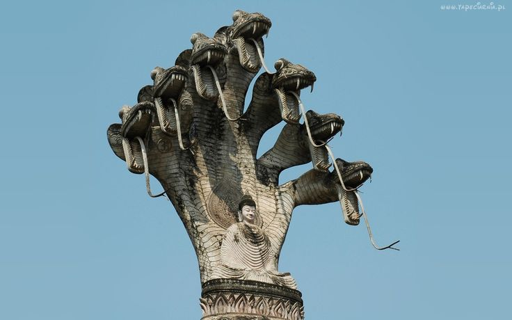 Siedmiogłowy, Smok, Budda