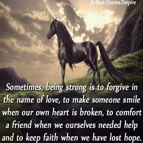 Pin by Sherri Nitti on Horse quotes | Horse quotes, Horse ...