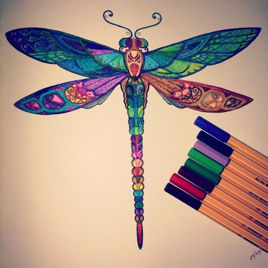 33 Best Coloring Johanna Basford Dragonfly Images On Pinterest