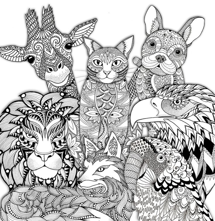 1072 best images about Adult Colouring Animals Zentangles