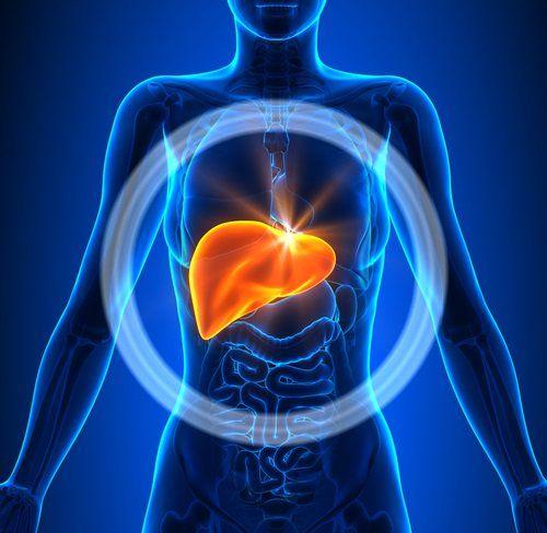 Limpieza del hígado y vesicula biliar con alimentos