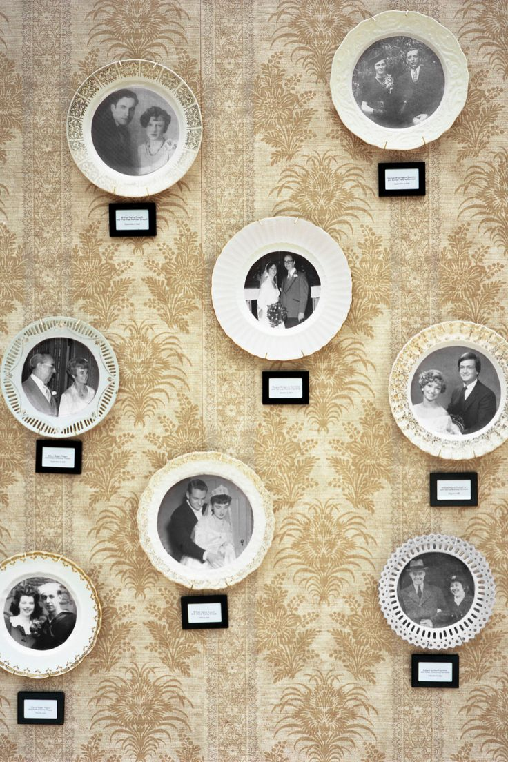 Display a Fresh Spin on the Family Tree
