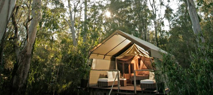 Paperbark Camp offers a peaceful retreat in beautiful #JervisBay, with unique luxury tent accommodations! This is the perfect #hotel for adventurous mountain traveler's in #Australia!