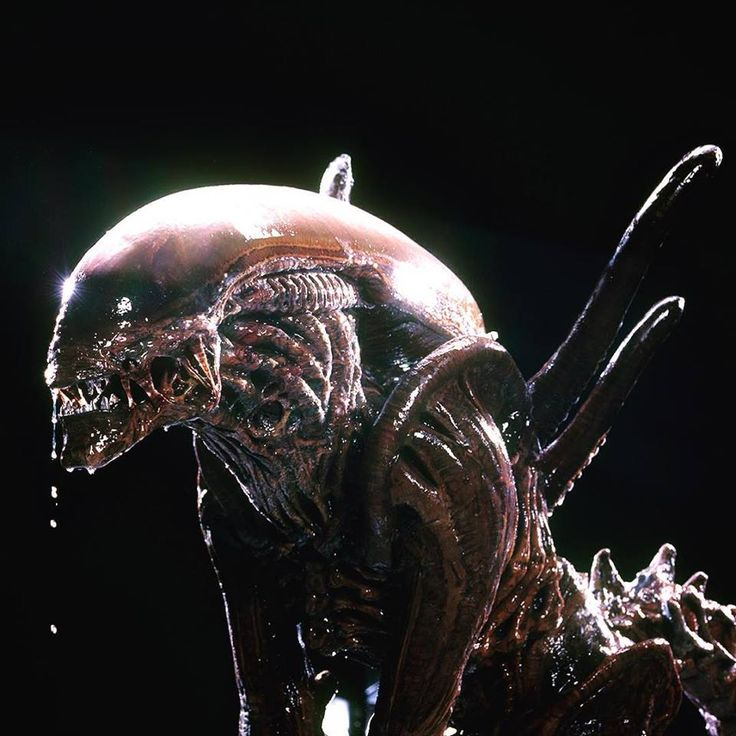 Alien 3 Movie: 94 Best Images About Alien, Aliens, Alien 3, Alien