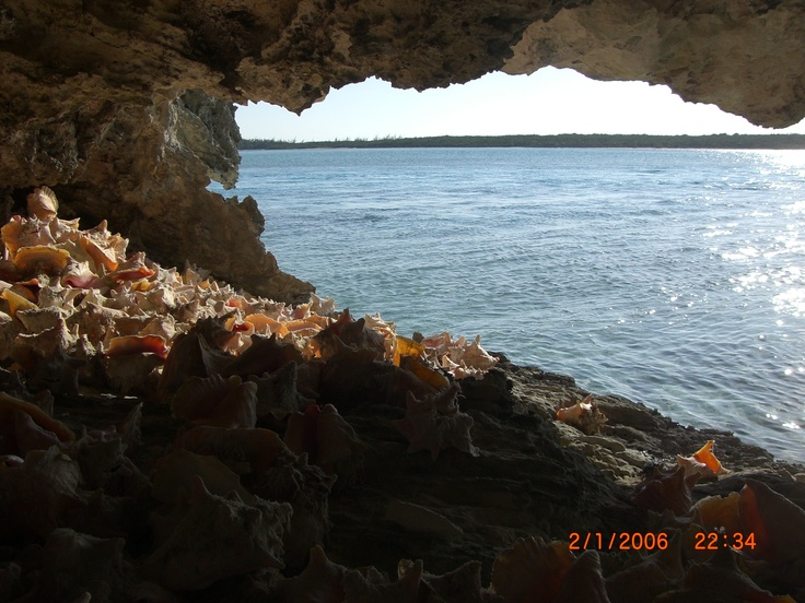 Conch shell filled cave at Norman's Cay