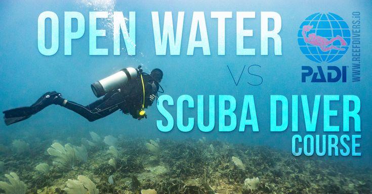 The Difference Between PADI Open Water Diver and PADI Scuba Diver Course #scubadiving #PADI #scuba