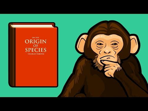 See The Basics of Evolution & Natural Selection Explained In Minutes http://www.makeuseof.com/tag/web-series-explains-basics-evolution-natural-selection-minutes/