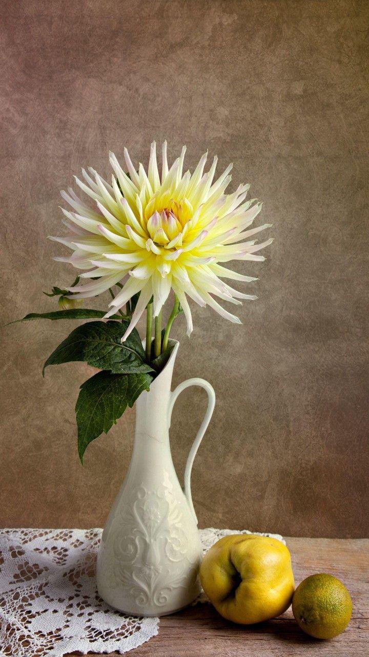 Chrysanthemum Flower Vases Flower Pots Abstract Design