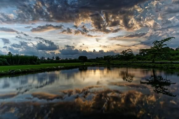 Sunset at The Rice Field