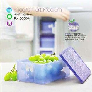 Fridgesmart Medium