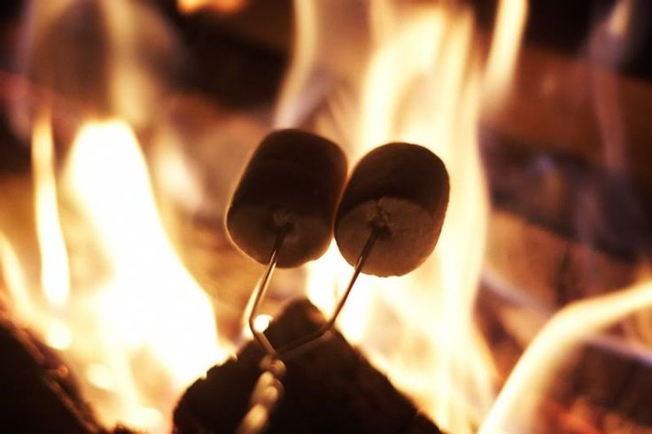 Who is looking forward to toasting marshmallows this Bonfire Night?
