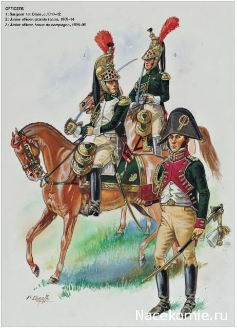Napoleon's Dragoons of the Imperial Guard_Officiers 1-Surgeon 1st Class 1810-12 2-Junior officier, grande tenue 1808-14 3-Junior officier,tenue de campagne 1806-08
