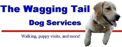 The Wagging Tail Dog Services