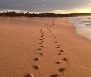 Tura Beach at Merimbula, NSW, Australia