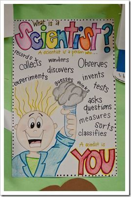 What is a Scientist? Anchor Chart  / The First Grade Parade