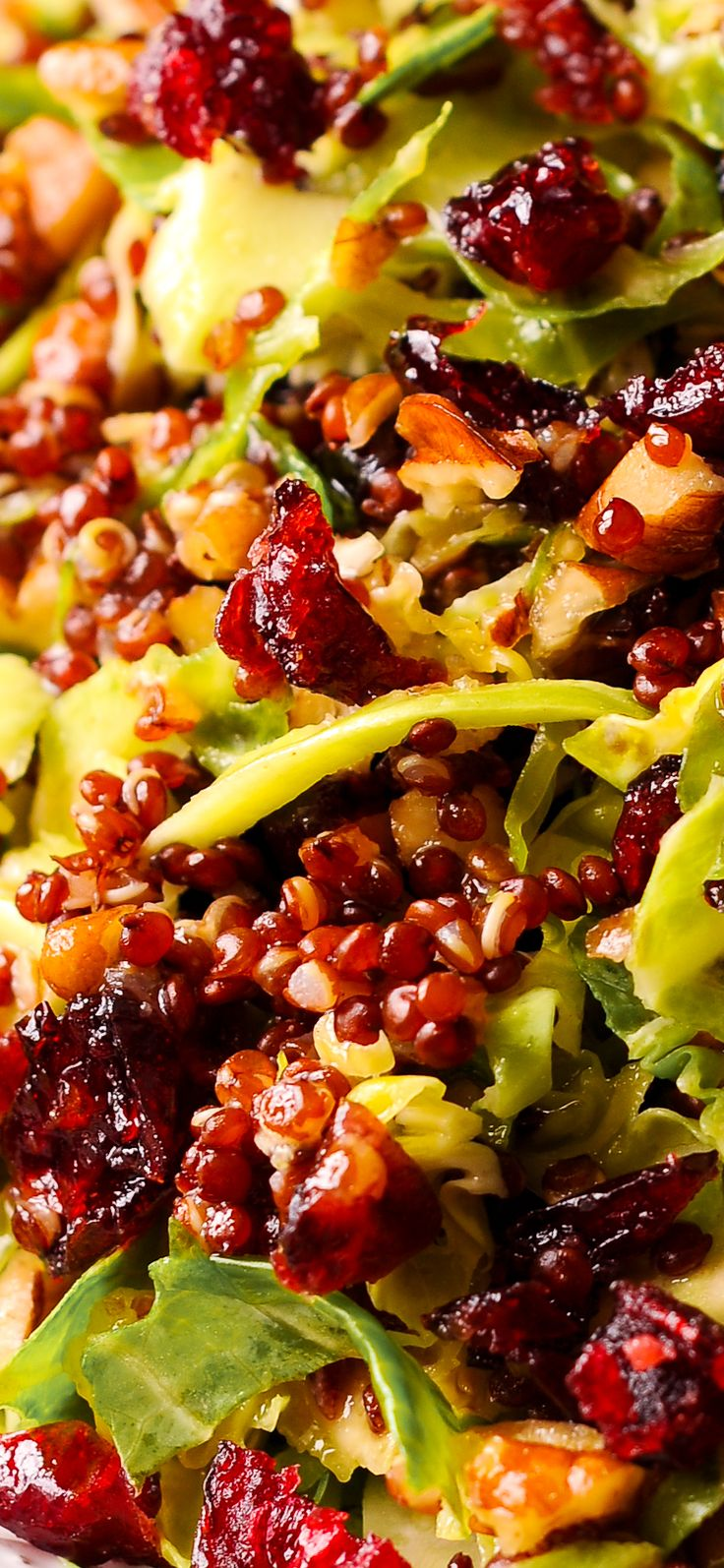 Warm Quinoa and Brussels Sprout Salad  in Honey Mustard Vinaigrette is loaded with pecans and cranberries. Healthy salad, lots of nutrients, antioxidants, red quinoa, Dijon mustard, gluten free. #healthy #glutenfree