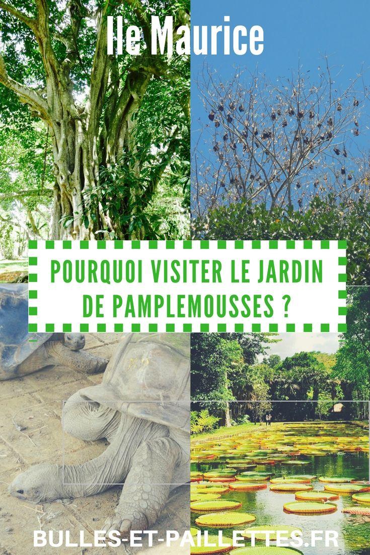 Incontournable à l'Ile Maurice, le Jardin de Pamplemousses est rempli de merveilles ! Laissez-moi vous faire découvrir cet écrin de verdure et vous convaincre d'y aller lors de vos prochaines vacances à l'Ile Maurice :-)