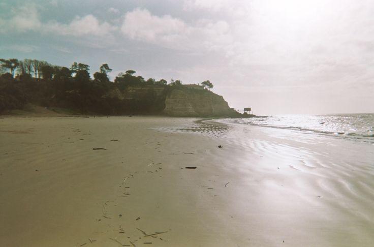 Untitled  (Disposable Camera) #disposablecamera #beach #cycomind