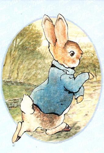 62 best Peter rabbit bday images on Pinterest | Birthday cookies ...