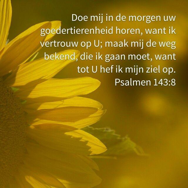 .Doe mij in de morgen Uw goedertierenheid horen, want ik vertrouw op U; maak mij de weg bekend die ik te gaan heb, want tot U hef ik mijn ziel op.   Psalmen 143:8