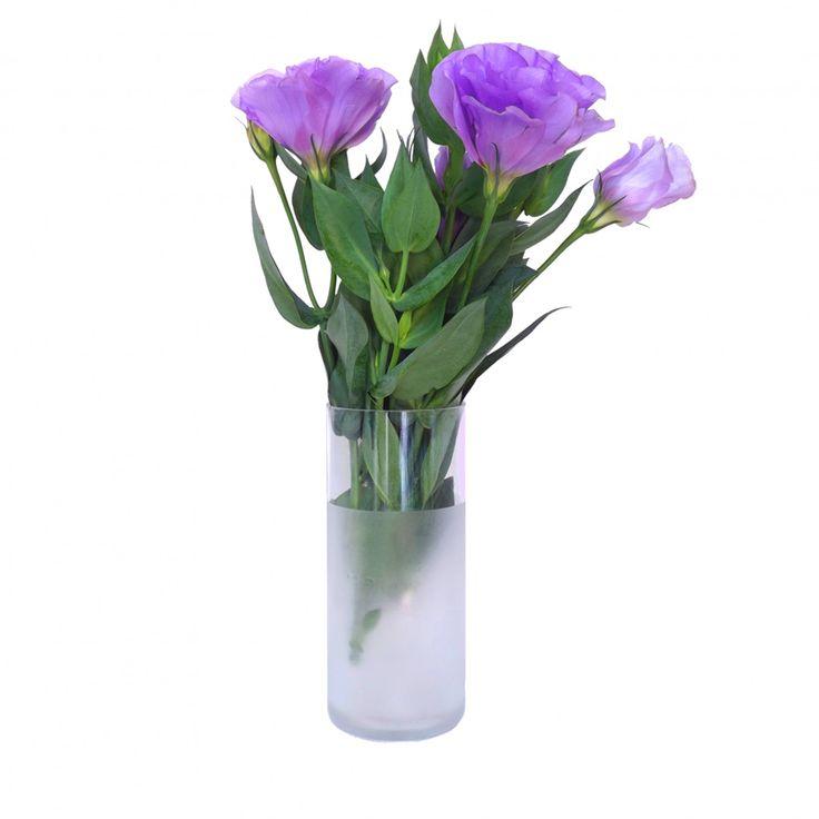 Vaso Brunello - Os Vasos Brunello são perfeitos para seu arranjo de flores. Simple e elegante, são feitos com garrafas de vinhos nas cores verde, marrom ou transparente, e combinam muito bem com sua mesa de centro, aparador ou no lavabo. As flores não inclusas :)