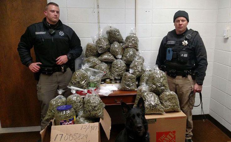 Elderly couple told cops 60 pounds of marijuana was for 'Christmas presents' - wtvr.com: wtvr.com Elderly couple told cops 60 pounds of…