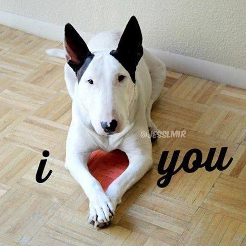 I love you, too :)