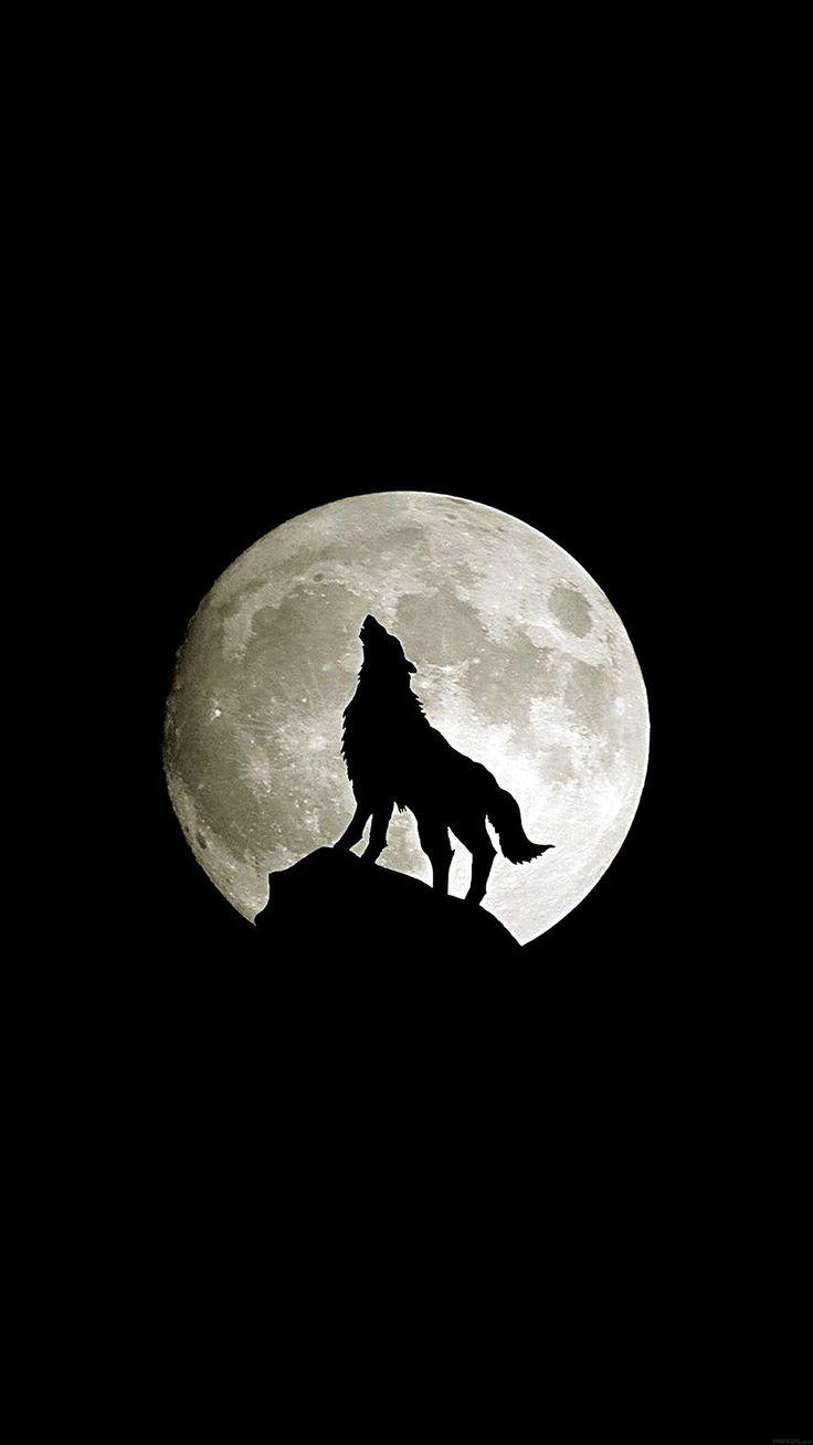 Iphone wallpaper tumblr wolf - Wolf Howl Animal Dark Minimal Nature Iphone 6 Plus Wallpapers Animal Friend Iphone 6 Plus Wallpapers